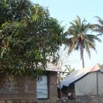 Distant view of tent at Lion Roar farm, Bhojde, Sasan Gir