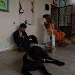 ghantvad-ashram.jpg