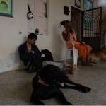 ghantvad-ashram_thumb.jpg