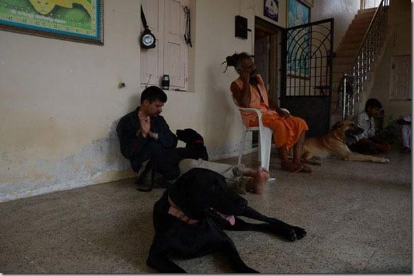 ghantvad-ashram