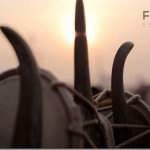 faith-connections-documentary-poster-pan-nalin_thumb.jpg