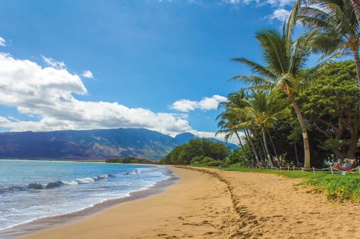 Trip To Waikiki
