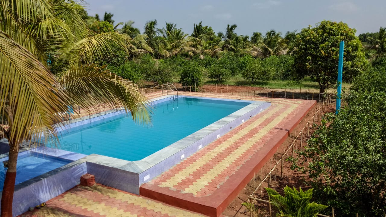 Swimming Pool DNK Organic Farm