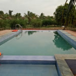 Swimming Pool at DNK Organic Farm